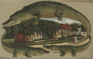 Alligator Borders Post Card of Old Ft. Dallas, Miami