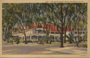 The White House Postcard Gainesville