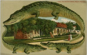 The Old Fort Dallas, Alligator Borders Card S506